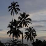Шри-Ланка: Негомбо и Коломбо