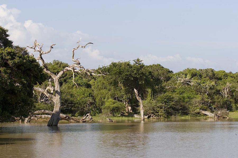 Национальный парк Яла