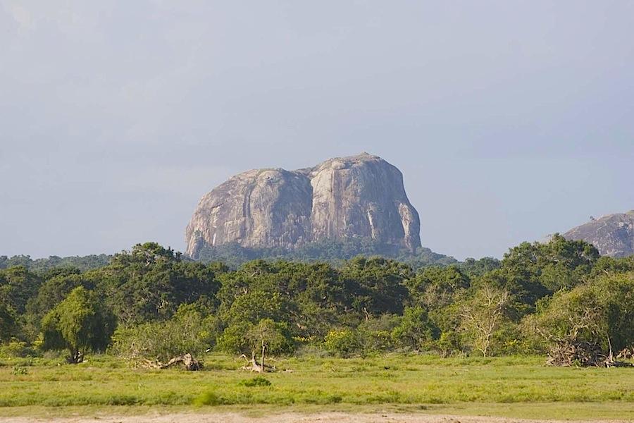 слоновья гора в Национальном парке Яла