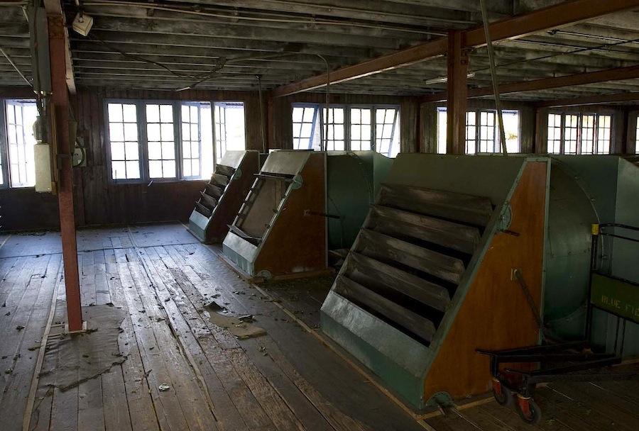вентиляторы на чайной фабрике