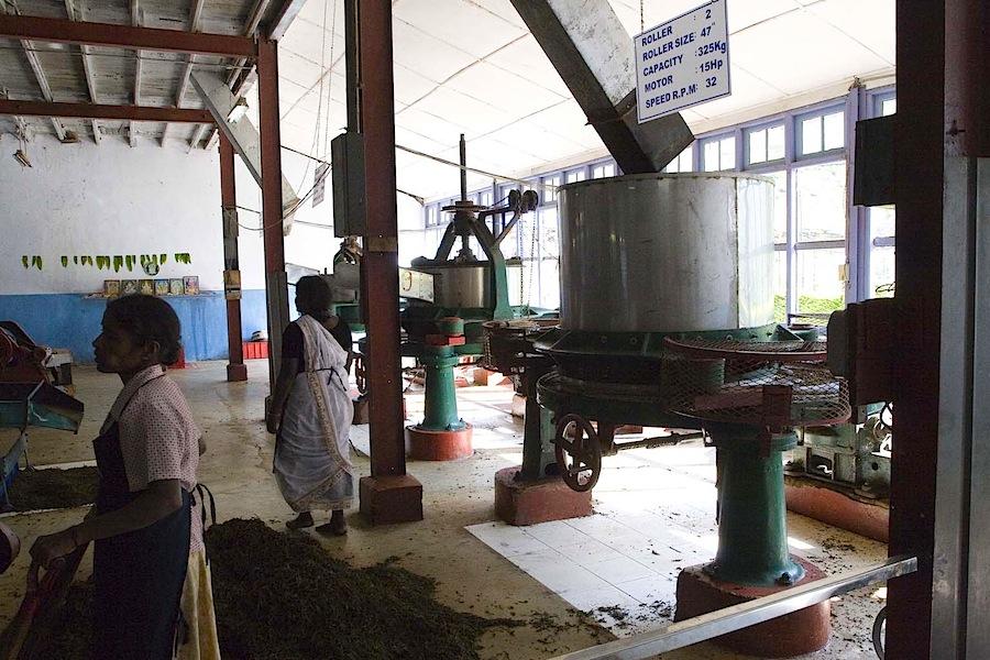 чайная фабрика, Шри-Ланка