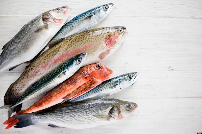 рыба, свежий улов