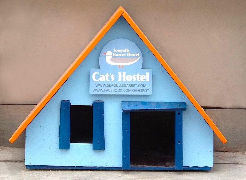 Хостел для кошек, Рига, граффити