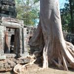 По следам «Лары Крофт»: Та Прохм — храм Ангкора, поглощенный джунглями