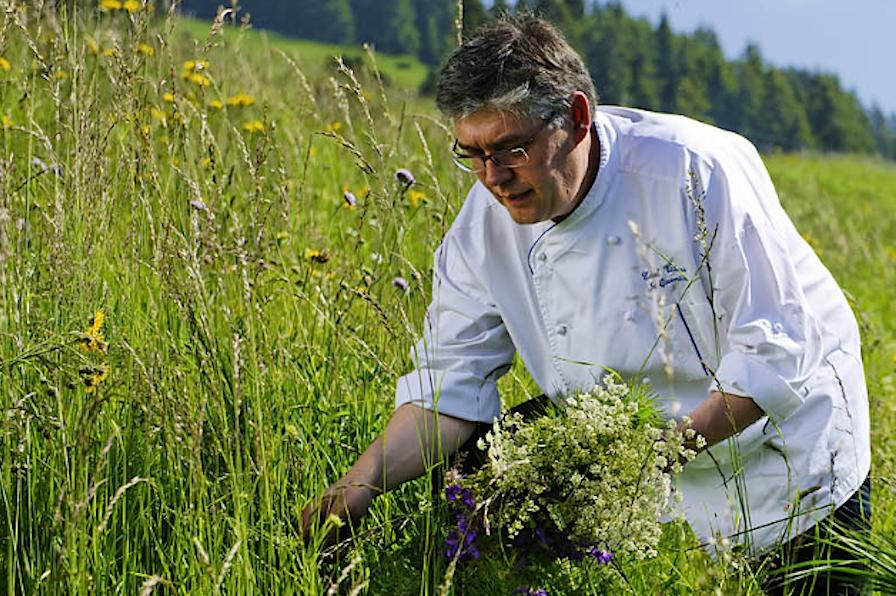 шеф Eurotel Victoria собирает травы