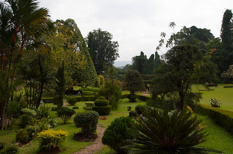 Королевский сад на Шри-Ланке