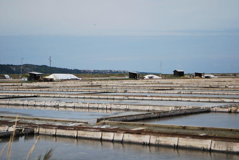 бассейны, в которых выращивают соль
