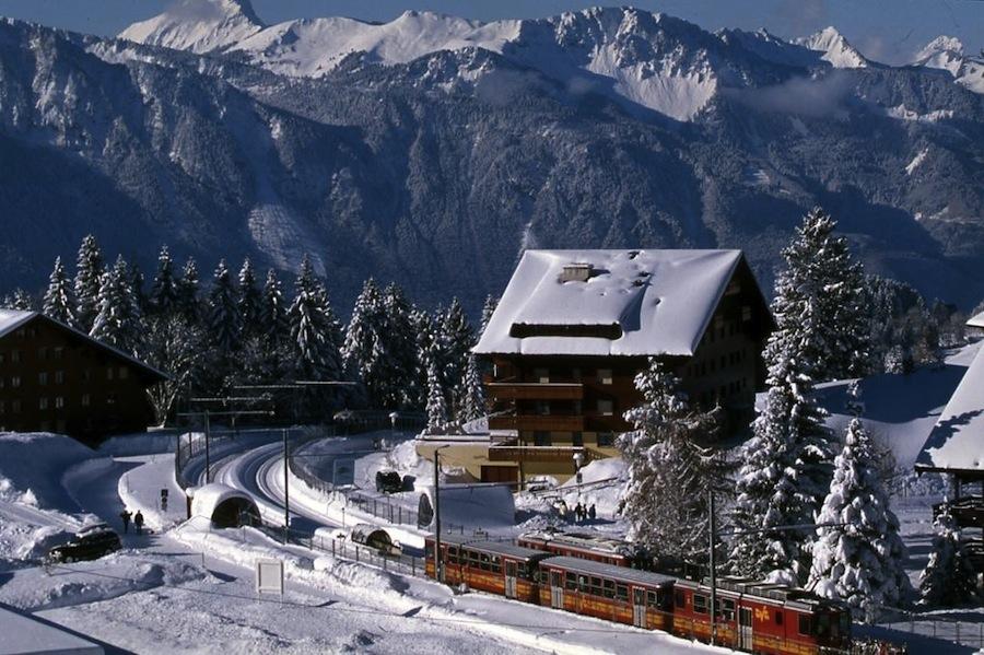 поезд на горнолыжный курорт