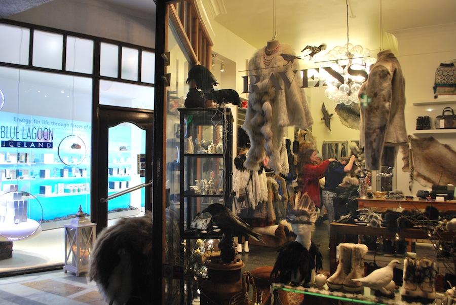 магазин, в котором торгуют шкурами и чучелами ворон и тупиков