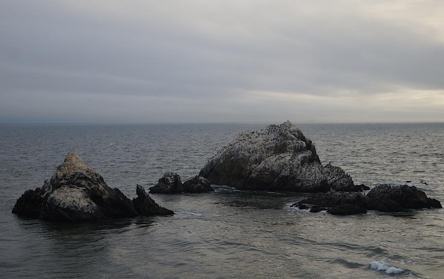 прибрежные камни в заливе Сан-Франциско