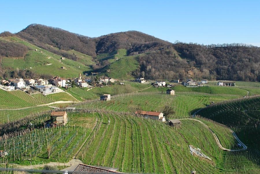 виноградники Картице (Cartizze
