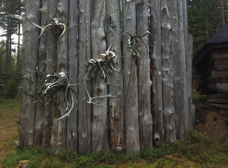 оленьи черепа на заборе у жилища шаманов