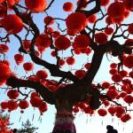 Как в Азии отпраздновали Китайский новый год?