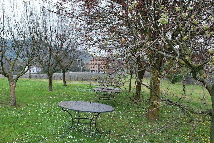 садик на вилле Вескови (Villa dei Vescovi)