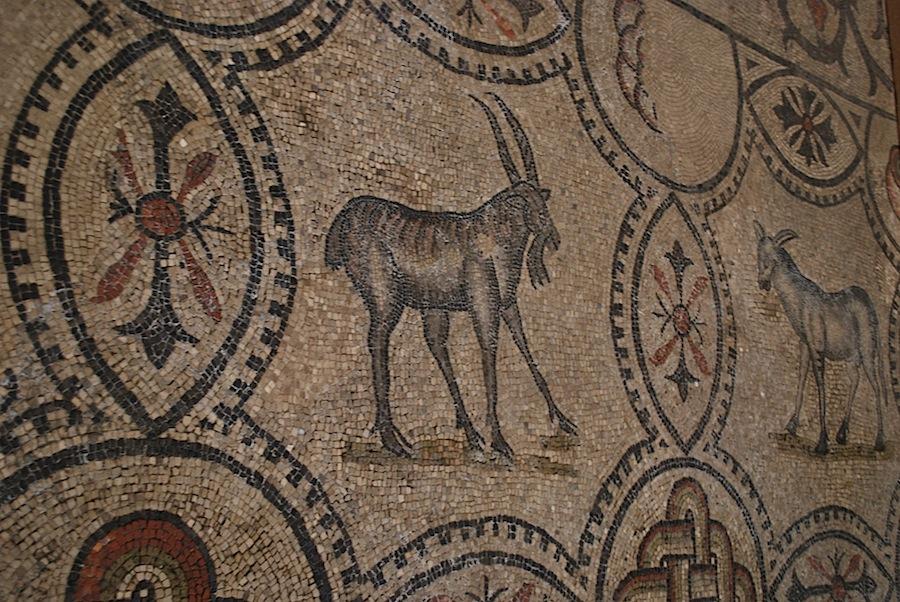 мозаика базилики Аквилеи