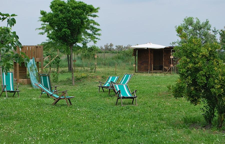 лежаки на лужайке близ таверны