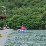 Лимский фиорд: дегустация устриц в Хорватии
