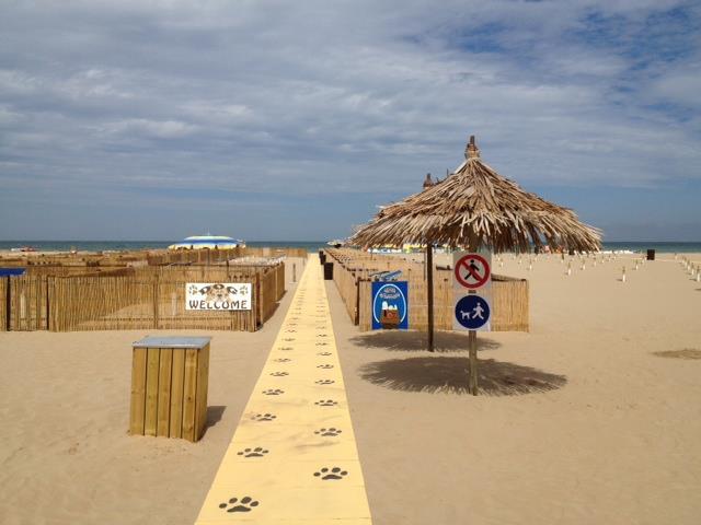 пляж No Problem