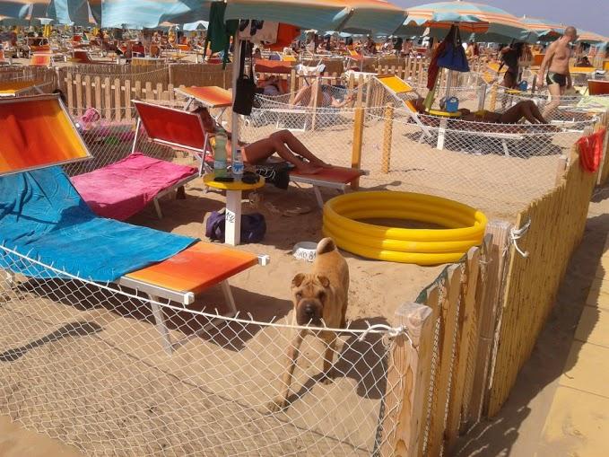 сьют на пляже No Problem