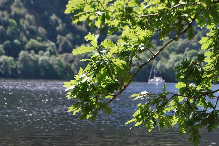 озеро Lox-Oy