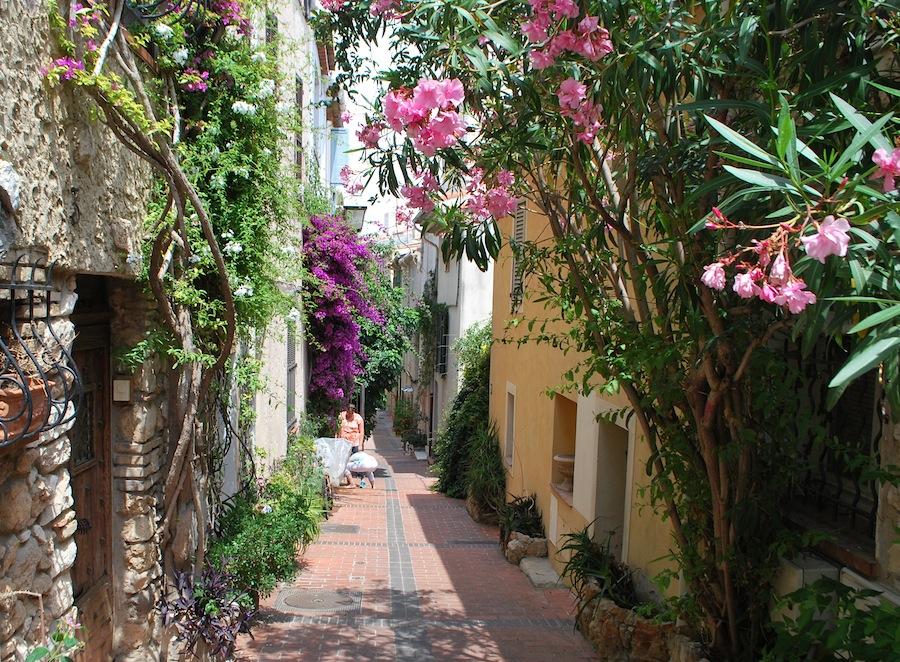 цветущая улица, Антиб (Antibes)