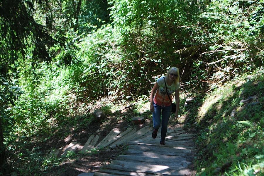 между пирамидами проложены дорожки, а на вершину ведут деревянные ступени