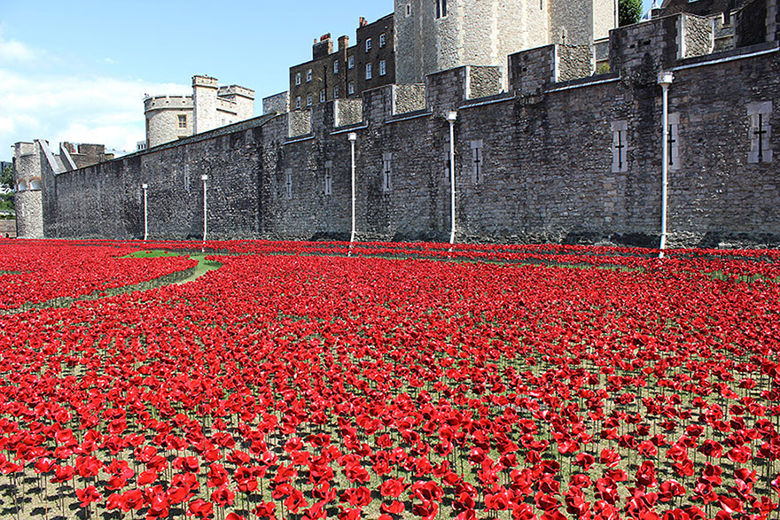 ceramic-poppies-first-world-war-installation-london-tower-2-1
