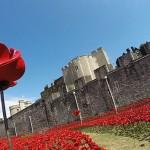 В лондонском Тауэре расцветут керамические маки