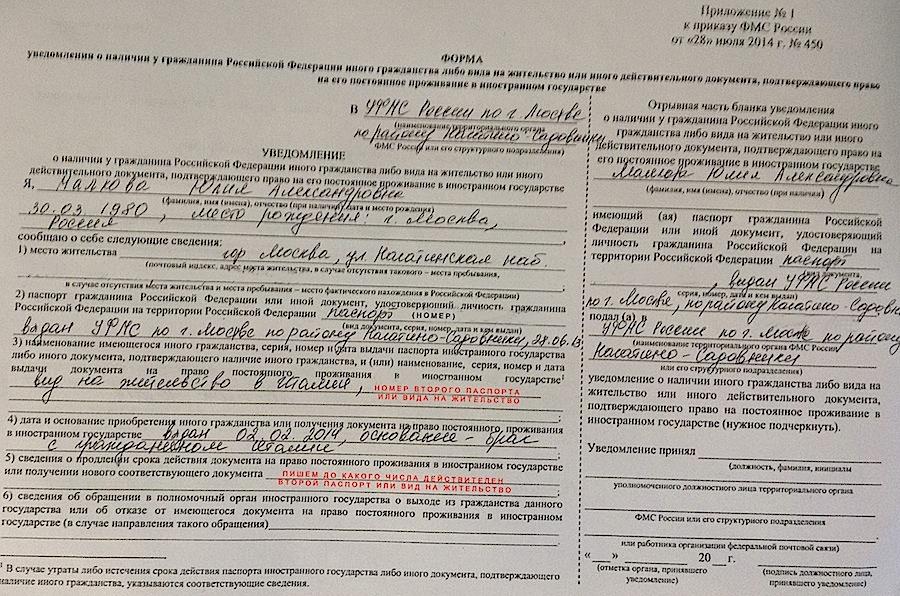 Бланк заявление на двойное гражданство