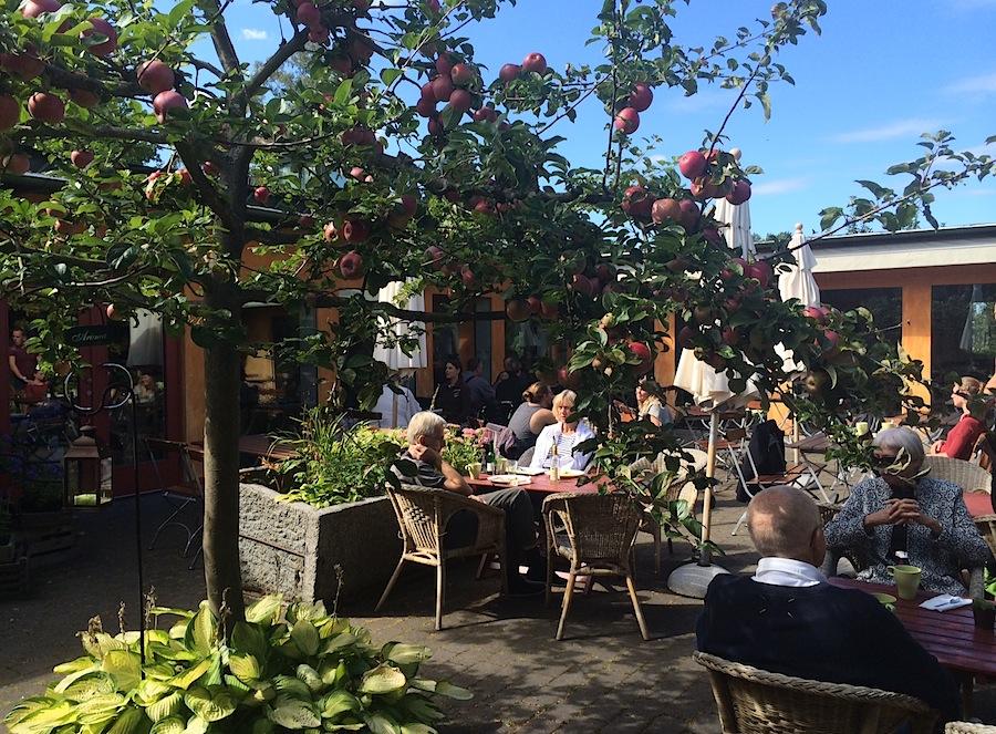 Kivik musteri, ресторан, Швеция, сидр, кафе, лето, яблони, сад