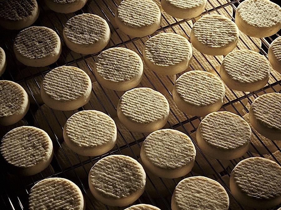 Tomme vaudoise, сыр, Швейцария, швейцарский сыр