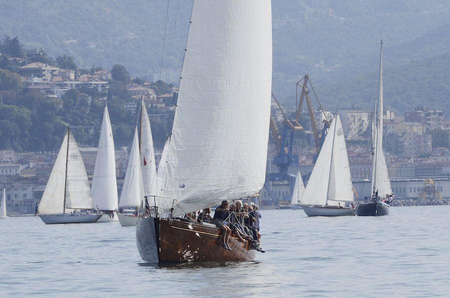 BARCOLANA 2014, Барколана, регата, яхты, море