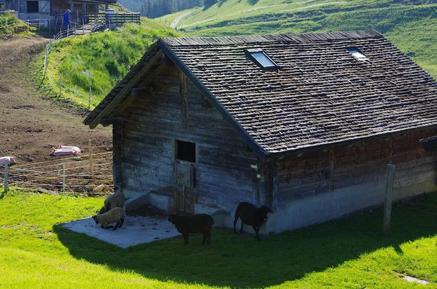 Шато д'Э в Альпах