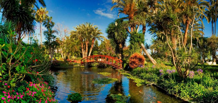 сад Hotel Botánico