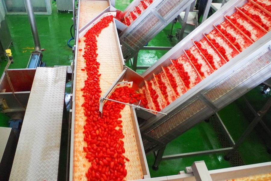 контейнер, обрабатывающий томаты