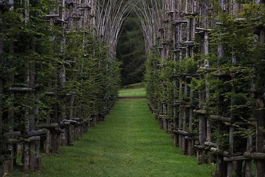 храм деревьев, Бергамо