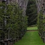 Must-see: храм из живых деревьев в Бергамо