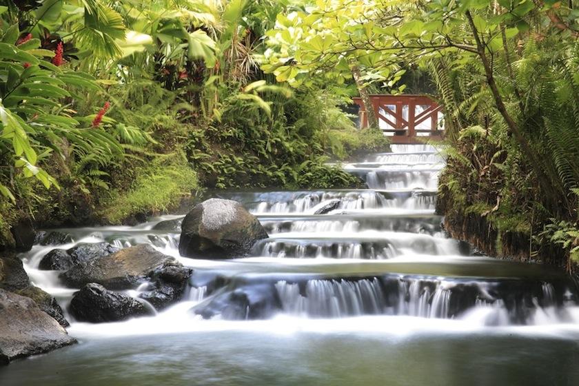 Термальные источники Tabacon, Коста-Рика