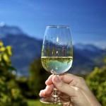 Швейцарские вина: винодельни кантона Во