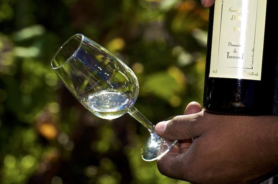 швейцарское вино, белое вино, кантон, винодельни