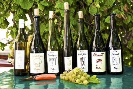 Лучшие Вино Швейцарии Врачи