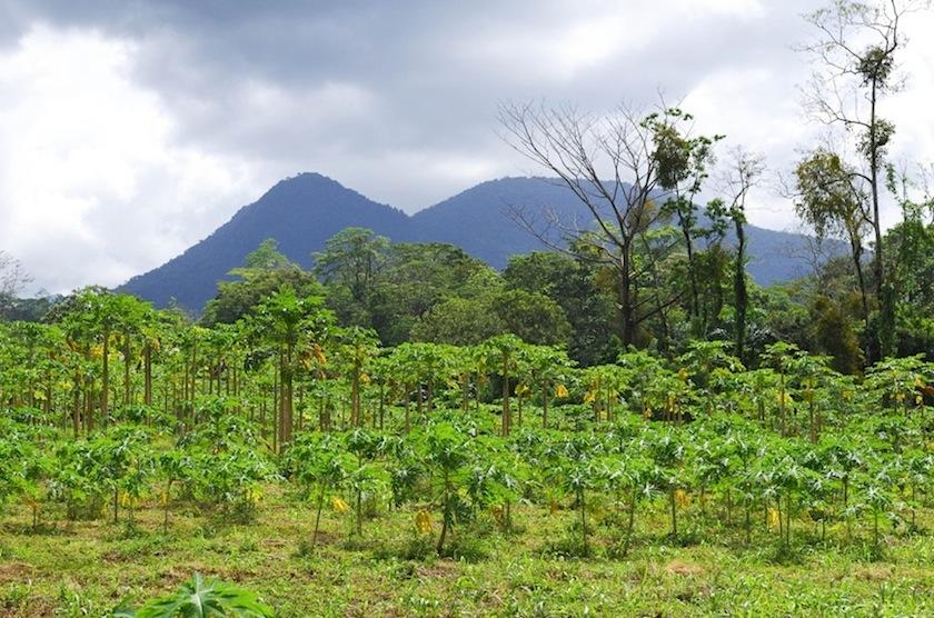 Вулкан Ареналь виден издалека, Коста-Рика