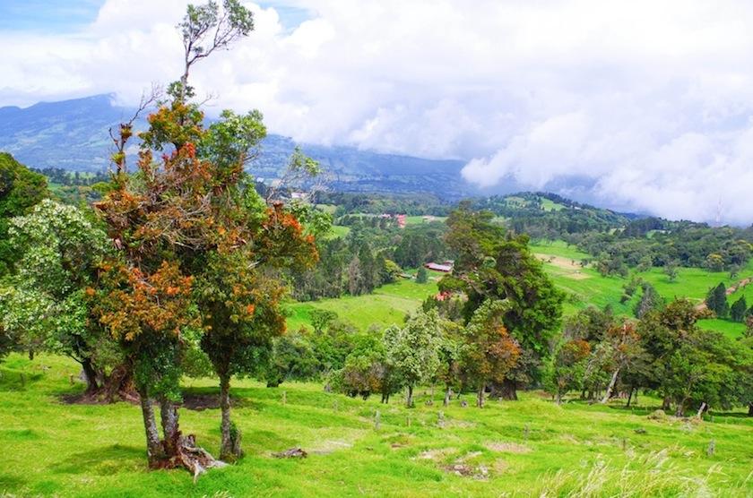 Центральная долина на пути от Сан-Хосе к Поас, Коста-Рика