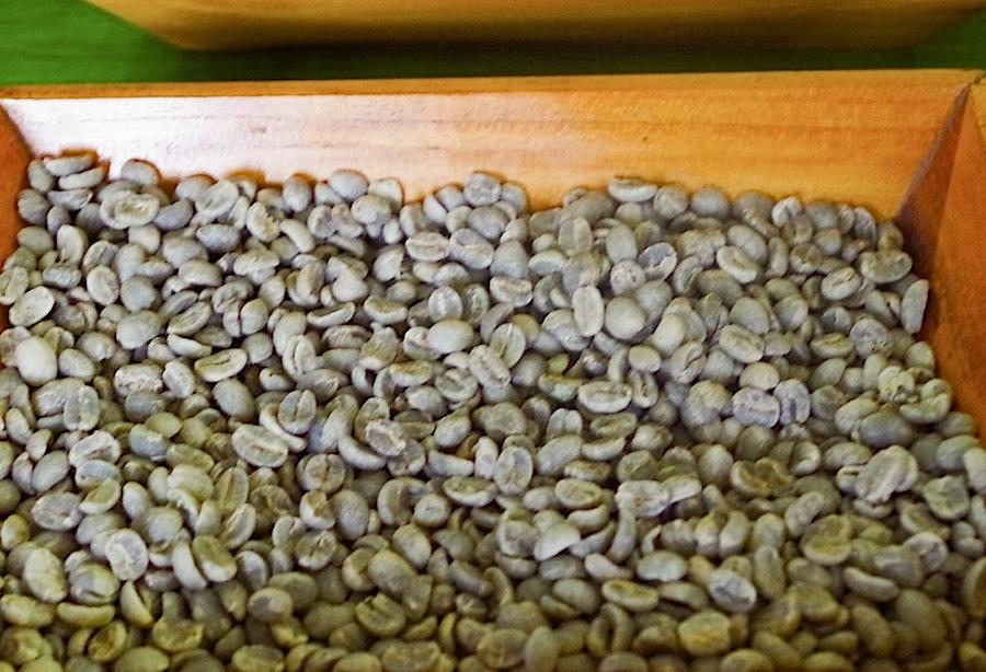 зеленые кофейные зерна, Коста-Рика