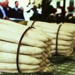 Совместный проект с Белой Дачей: рассказываем о спарже из Бассано-дель-Граппа