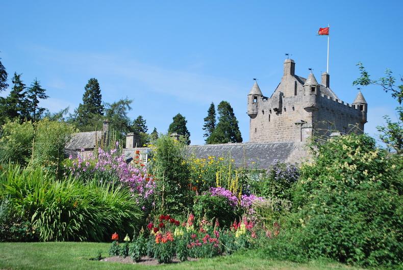 сад цветов в замке Каудор