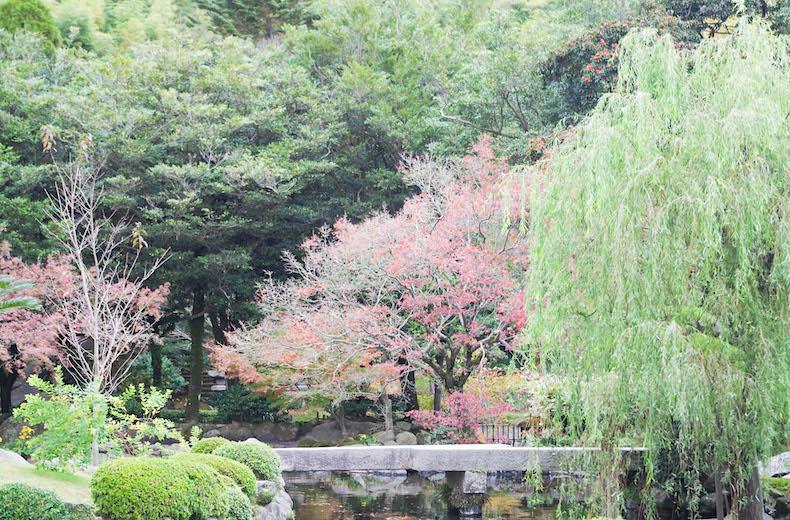 сад Сэнганэн, Япония