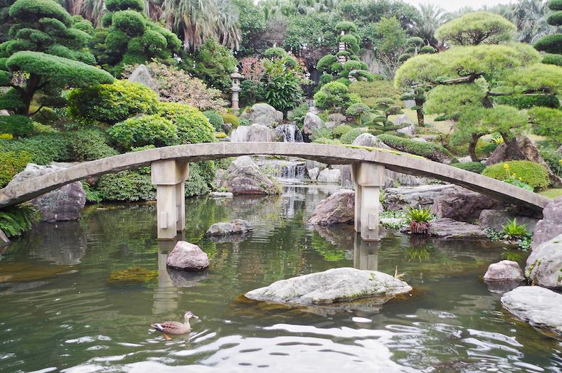 сад Amami No Sato в Японии