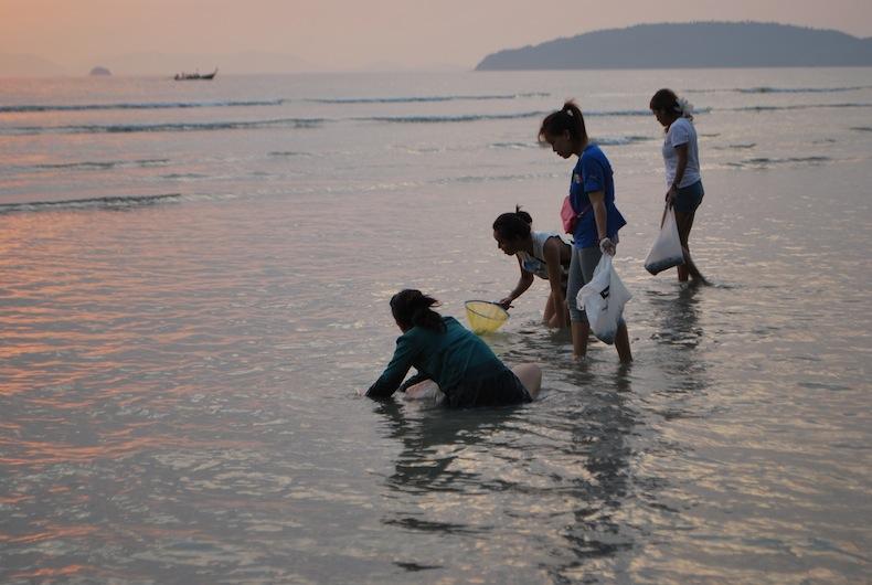 тайские девушки ловят молюсков на закате, Таиланд, Краби