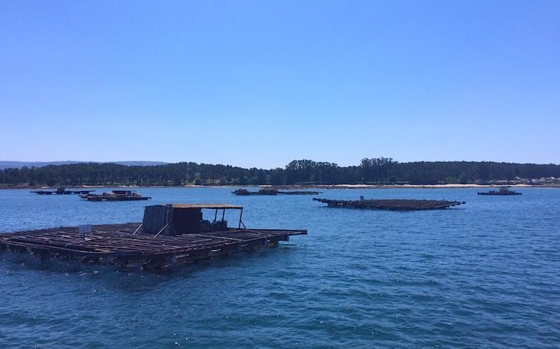 платформы для выращивания моллюсков, Галисия, Испания
